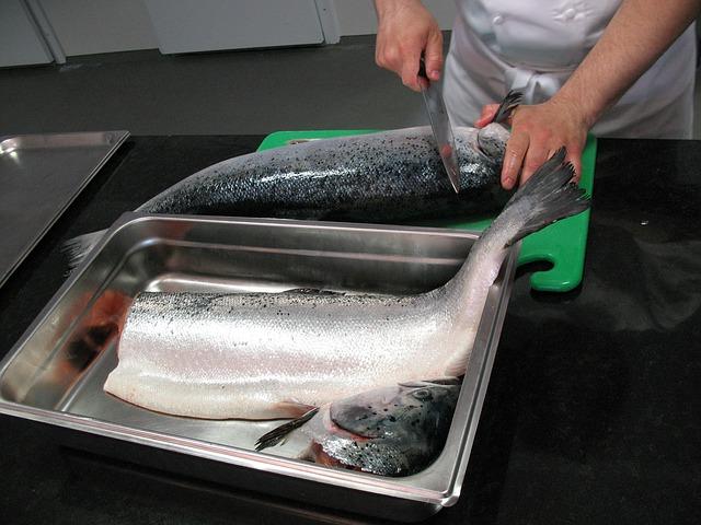 salmon-749096_640
